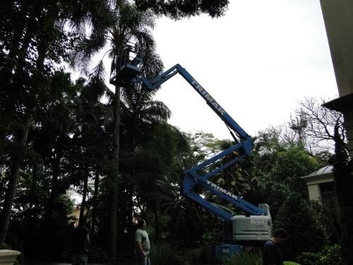 DSC03943